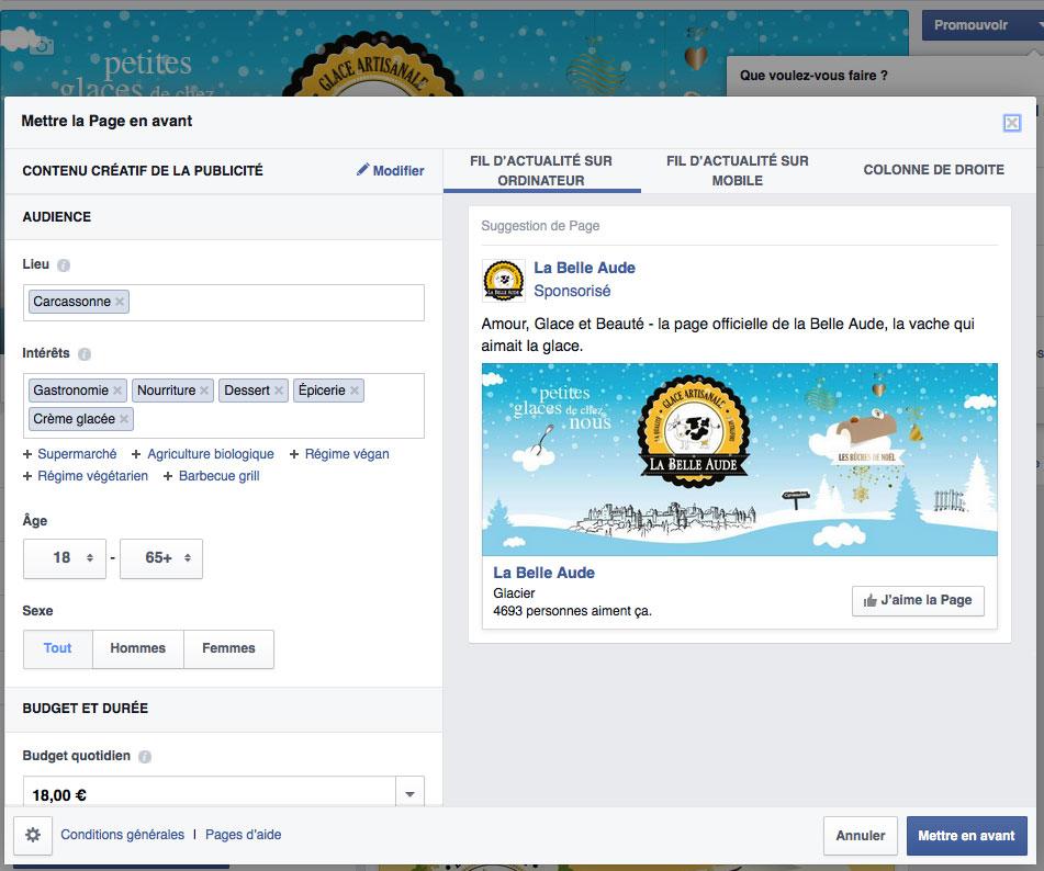 page-fan-facebook18