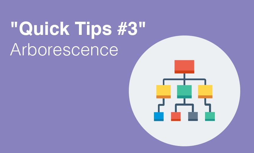 """Quick Tips #3"" Arborescence"